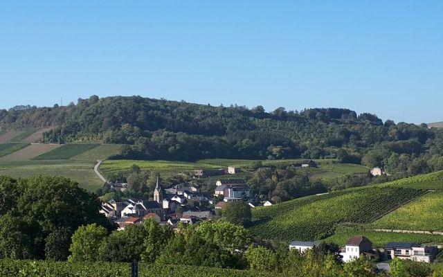 Wijnland Luxemburg