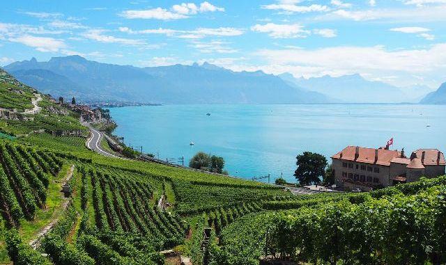 Wijnland Zwitserland